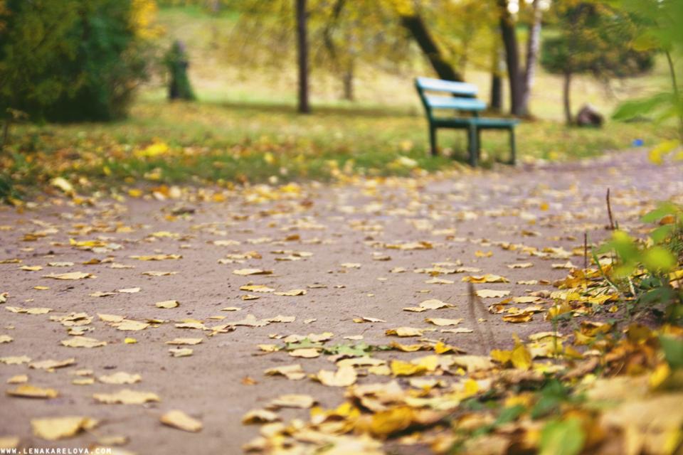 pavlovsk park saint-petersburg,russia