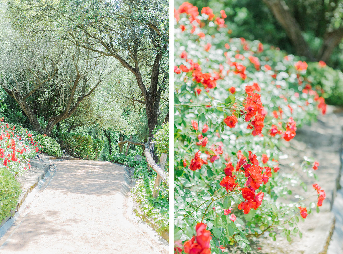 Castell de Emporda, Girona. Destination wedding photographer - Lena Karelova, Barcelona photographer