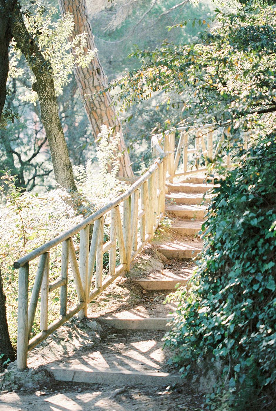 Olive trees at Labyrinth Park Barcelona | Fine Art Photographer | Lena Karelova Photography | Destination Wedding Photographer Barcelona |Film Wedding Photographer
